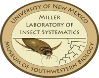 Miller Laboratory of Insect Systematics