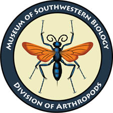 Museum of Southwestern Biology Division of Arthropods